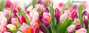 Titelbilder Facebook Ideen : spring day fresh pink purple tulips facebook cover ~ Lizthompson.info Haus und Dekorationen