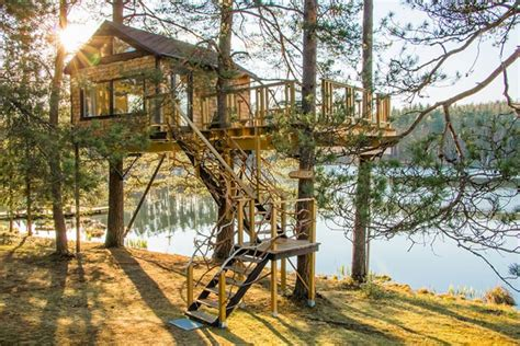 Treehouse Cone by the lake. - Baumhäuser zur Miete in ...