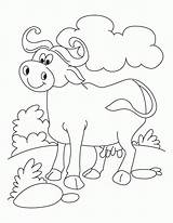 Buffalo Coloring Pages Ray Bills Water Printable Animals Domestic Fish Relaxed Cool Getcolorings Bison Popular Animal Pag Print Sheets sketch template