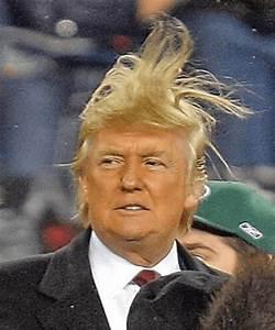 Donald Trump American President Hd Wallpaper, Images ...