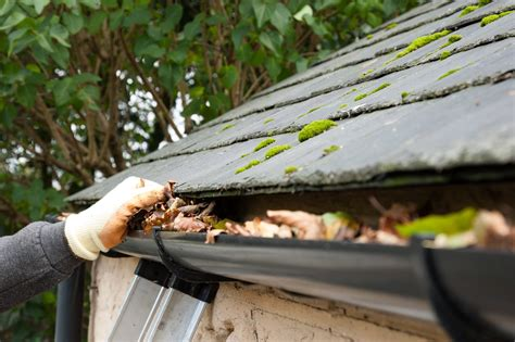 hire   gutter cleaning company professional