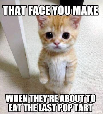 Pop Tart Meme - meme creator that face you make when they re about to eat the last pop tart meme generator at