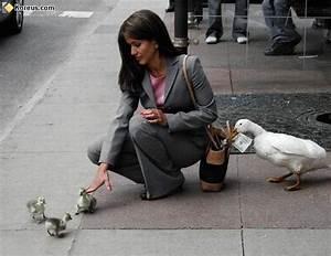 Plus Belles Photos Insolites : diversion ~ Maxctalentgroup.com Avis de Voitures