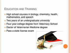 The Gallery For U0026gt Veterinarian Education Requirements