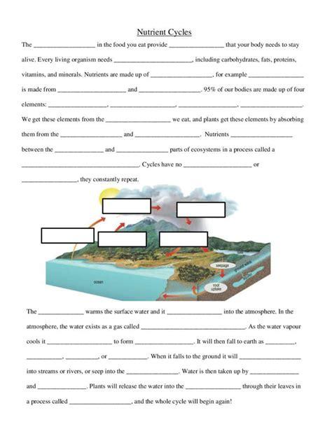 Nutrient Cycles  Worksheet  20172018 School Year Musts  Pinterest  Worksheets And Teaching
