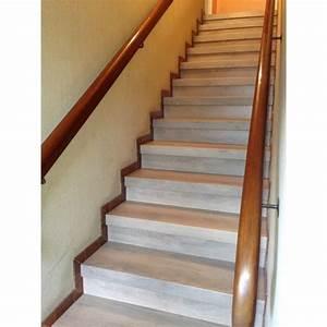 Renover Un Escalier En Bois : kit renovation escalier ~ Premium-room.com Idées de Décoration