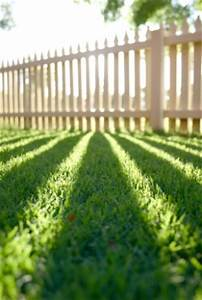 Gartengestaltung Unter Bäumen : ideen f r die gartengestaltung hausbau ~ Yasmunasinghe.com Haus und Dekorationen