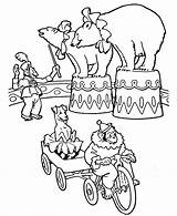 Circus Coloring Pages Animals Animal Printable Bears Carnival Bear Adults Sheet Honkingdonkey Tent Elephant Activity Theme Country Amazing Shapes Popular sketch template