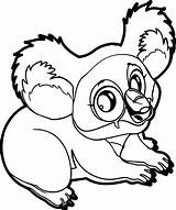 Koala Coloring Marsupial Pages Wecoloringpage sketch template