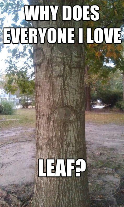 Tree Memes - sad tree memes quickmeme