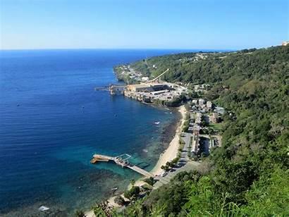 Island Fish Flying Cove Australia Wikipedia Where