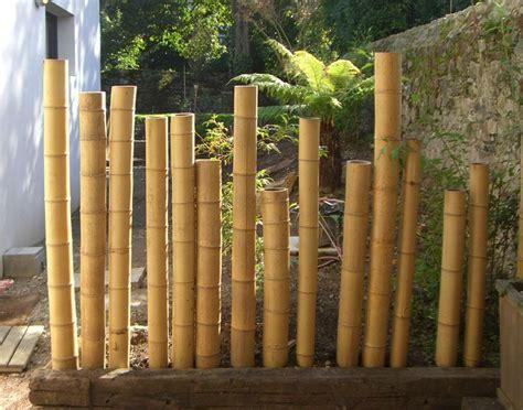 cloture en canne de bambou    cm de diametre