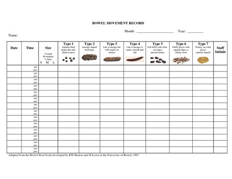 10 Best Images Of Bowel Movement Chart With Explanation