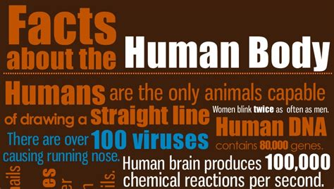 Amazing Facts about human Body, easiest way possible