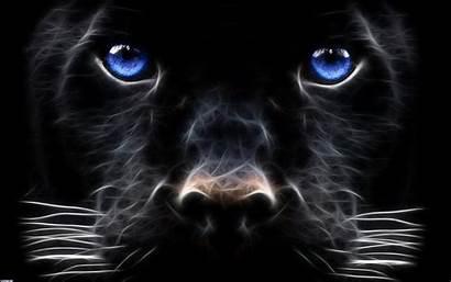 Beast Fanpop Eyes Wallpapers Desktop Animal Backgrounds