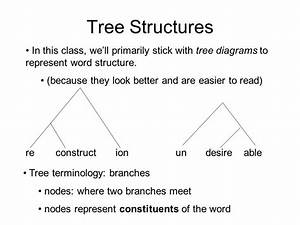 Linguistic Morp Tree Diagram Of      With Images