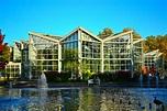 Palmengarten - Botanic Garden in Frankfurt - Thousand Wonders