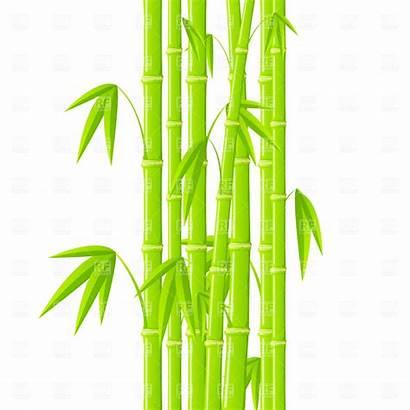 Bamboo Clipart Clip Leaves Panda Stalks Vector
