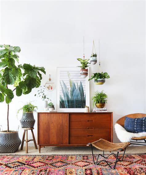 indoor hanging garden  anthropologie    amber interiors