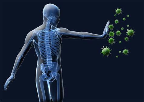16 fakta cara kerja sistem kekebalan tubuh manusia