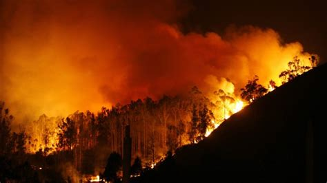 spanien waldbrand zerstoert naturpark bz berlin
