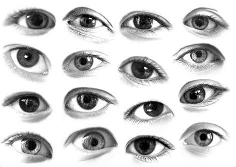 deep eyes template 175 eye and eyelash photoshop brushes free vector eps