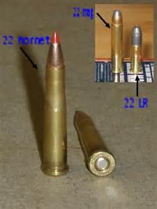 17 Hornet vs 22 Mag