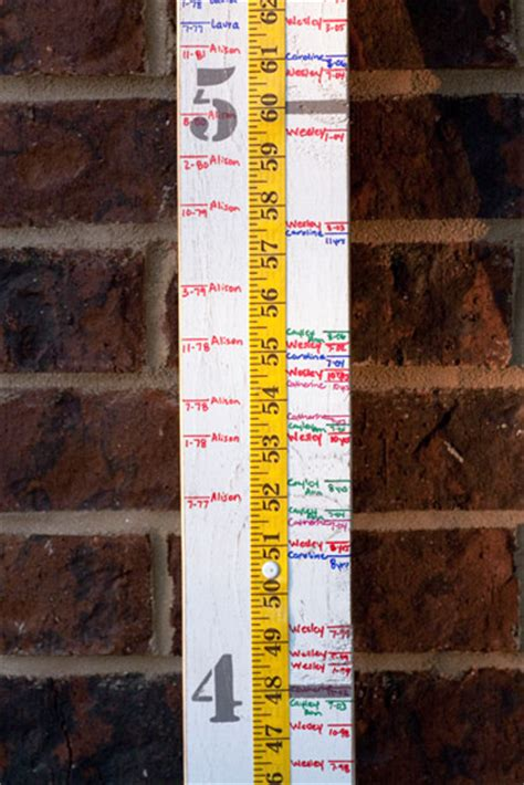 painted wood growth chart signs  andrea