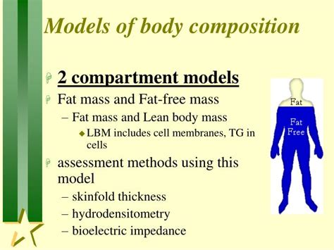 assessment  body composition powerpoint