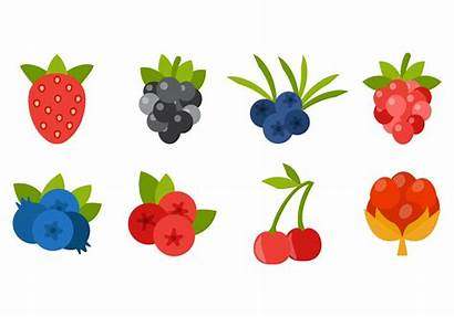 Vector Berries Icons Strawberry Clipart Blueberries Juniper