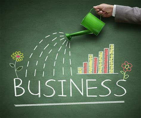 Grow Your Business With A Growth Business Plan 2 Entrepreneurs Are Planning For Business Growth Small Biz