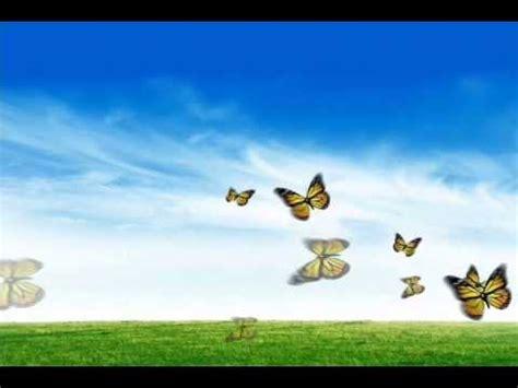 gratis protector de pantalla mariposas youtube