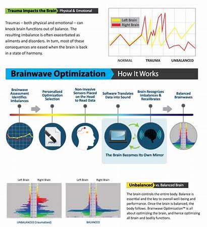 Optimization Brainwave Works Infographic Brain Right Left