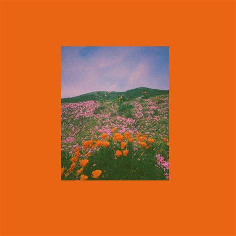 orange aesthetic wallpapers