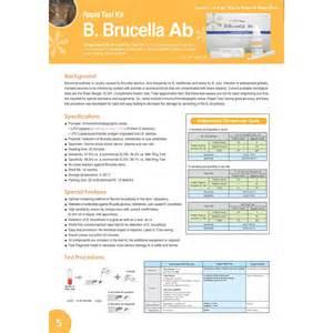 Anigen Bovine Brucella Antibody Rapid Test