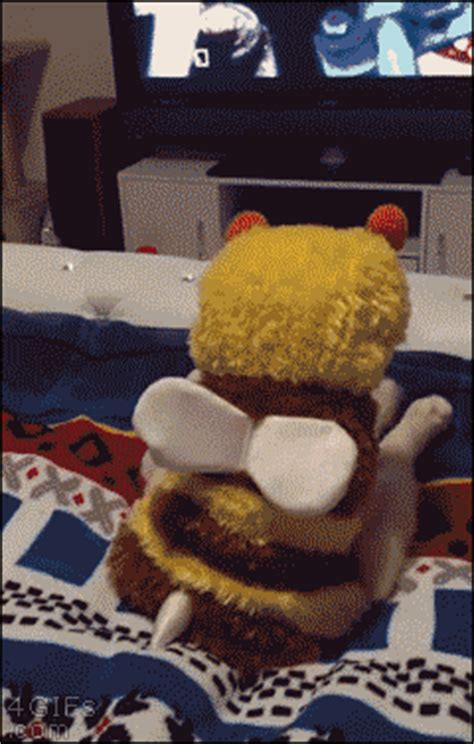 cat bee costume watching tv