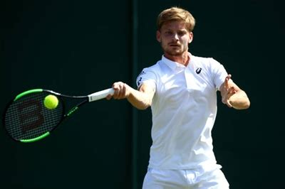 It's been an inconsistent year for goffin early on, while sonego has picked up momentum with a pair of match wins at this venue. The Main Tennis Achievements of David Goffin | CelebPoster ...