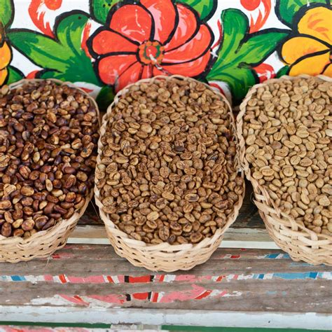 What can you expect flavour wise from a honey processed coffee? Cafe Imports