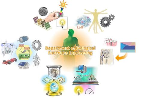 department of biological functions engineering about us departments graduate school of