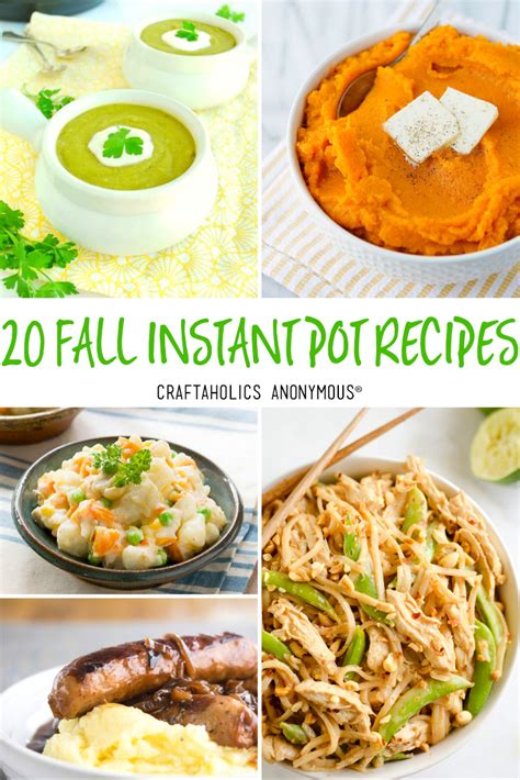 craftaholics anonymous  delicious instant pot recipes