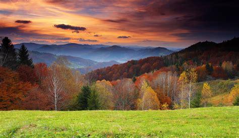 yeda design paysage d automne 82 50 euros