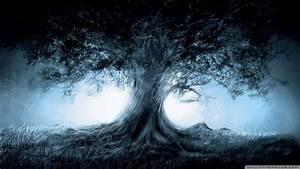 Tree of Life Desktop Wallpaper (56+ images)