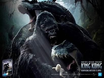 Kong King 2005 Wallpapers Movies Background Fanpop