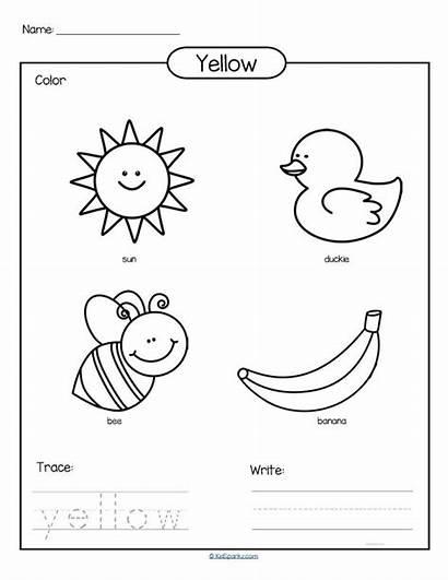 Worksheets Preschool Yellow Kindergarten Colors Activities Coloring