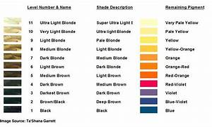 Aveda Hair Color Chart 2019 Hair Levels And Remaining Pigments To Tone For Hair