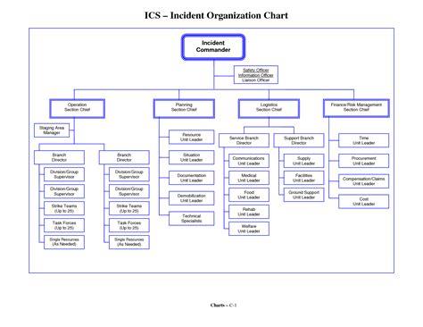 Organizational Chart Template Excel Organizational Chart Template Fillable Pictures To Pin On Pinsdaddy