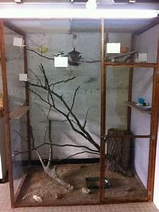 Fabrication D Une Voliere Exterieur : voliere interieur ~ Premium-room.com Idées de Décoration