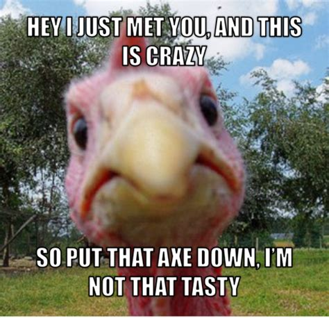 Turkey Memes - thanksgiving smiles
