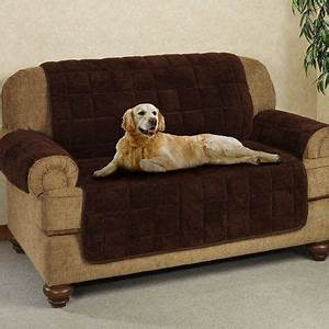 pet accessories by touchofclass 40 animals and pets With furniture animal covers