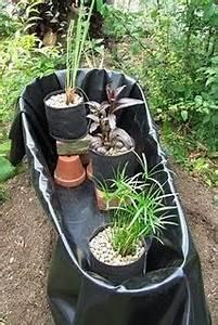 Miniteich Pflanzen Set : mini teich ~ Buech-reservation.com Haus und Dekorationen